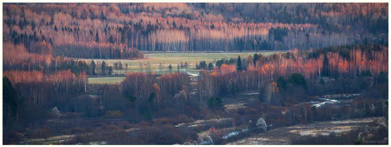 пейзаж,осень,закат,свет,лес,перспектива,архангельская область На закате дняphoto preview