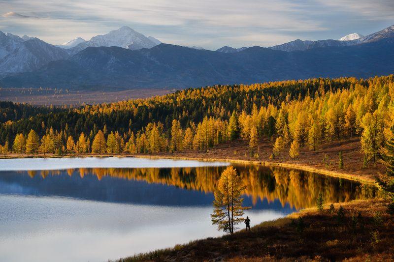 алтай, горы, осень, киделю В ритмах осениphoto preview