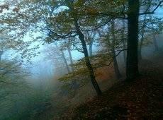 Осень в горах.....