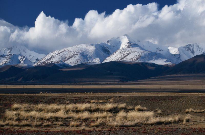 алтай, горы, осень Монгольский Алтайphoto preview