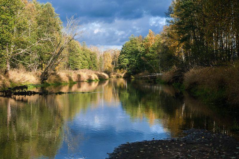 золотая, осень, река, старица, отражения, мещёра, рязанская область Pro позитивную осеньphoto preview