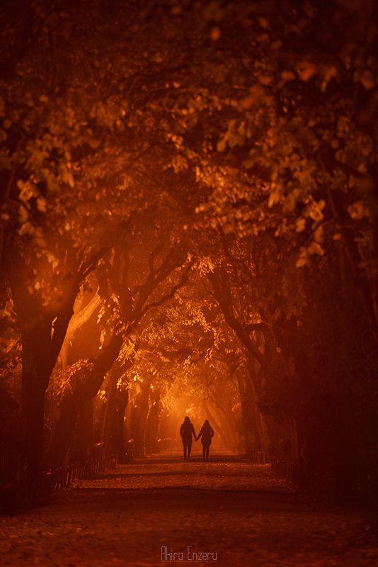 landscape, волшебная ночь Волшебная ночьphoto preview