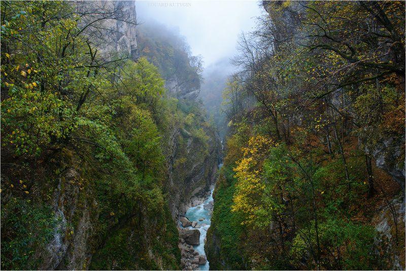 #Осетия, #Алания, #Северная, #Куртатинское, #лес, #широколиственный, #туман, #осень, #кавказ, #Кутыгин, #октябрь, #ущелье, #бирюза, #бирюзовые, #лазурь,  #голубые, #осеньнакавказе, #nikonrussia, #nikon Каньонphoto preview
