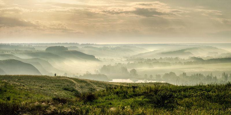 Снимая утренний туманphoto preview
