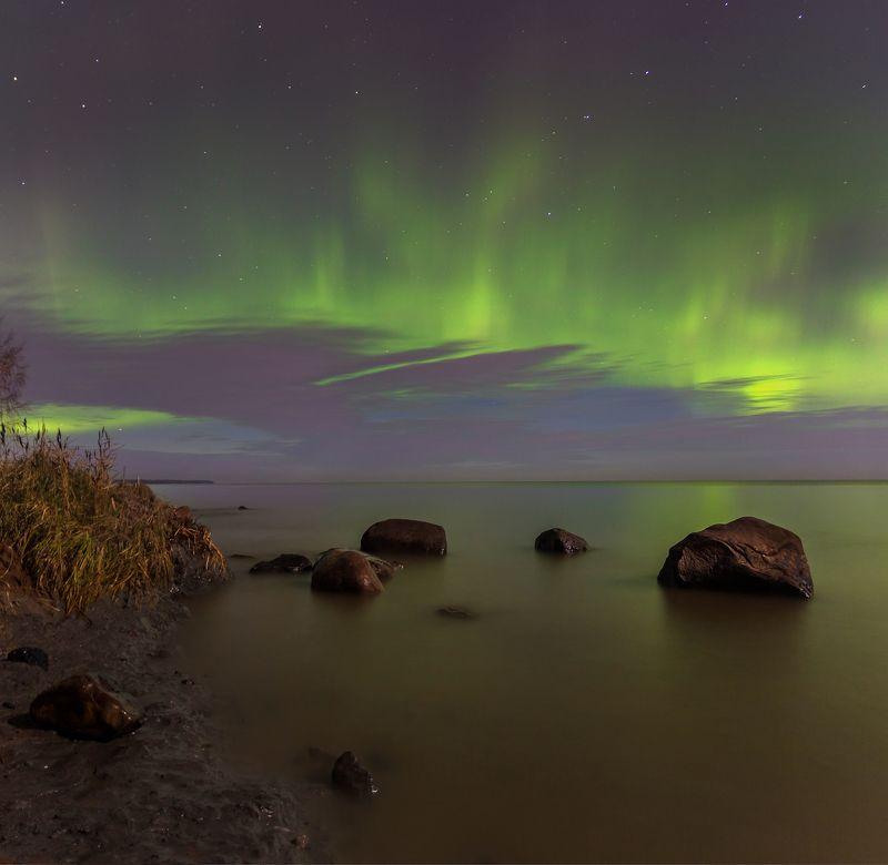 ладожское озеро, ладога, аврора ,северное сияние, космос, звезды Северная ночь. 07.11.17. Ладожское озероphoto preview