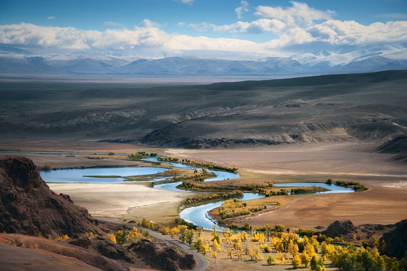 пейзаж, природа, панорама, горы, красная, желтая, золотая, осень, Алтай, Сибирь, холмы, Южно-Чуйский, хребет, река, Чуя, степь, долина, лес, широкий, большой, высокий С Красной горкиphoto preview