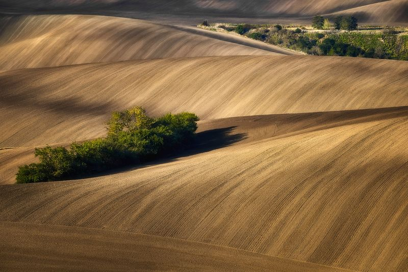 Moravian fields, Moravia, Czech Republic,  Kyjov The color of the earthphoto preview