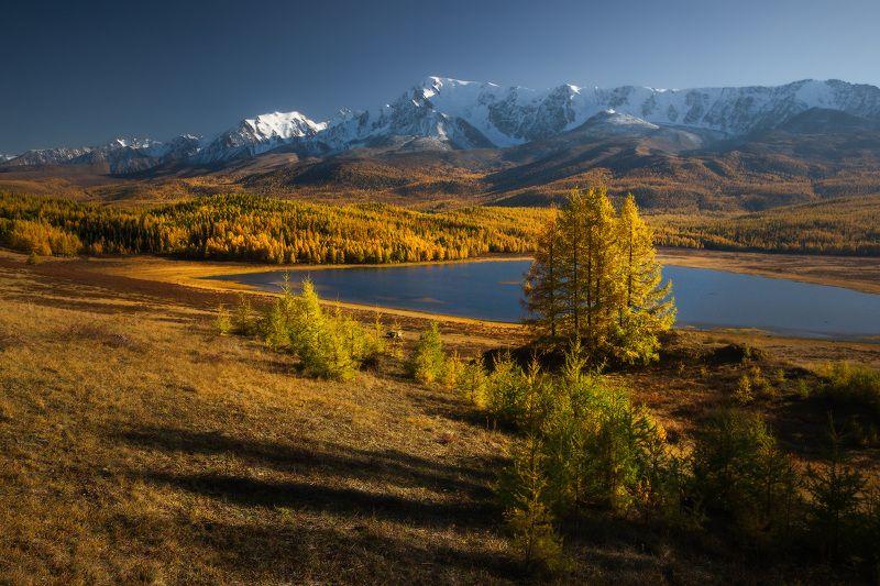 алтай, горы, осень, караколь, куркурек Каракольphoto preview