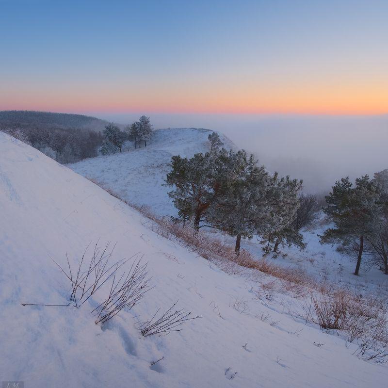 evening, fog, Landscape, light, nature, snow, sunset, Ukraine, white, winter, вечер, закат, зима, мороз, пейзаж, природа, свет, снег, сосны, сумерки, туман, Украина, холмы, hills, trees, colors, twilight В зимнем безмолвии ..photo preview