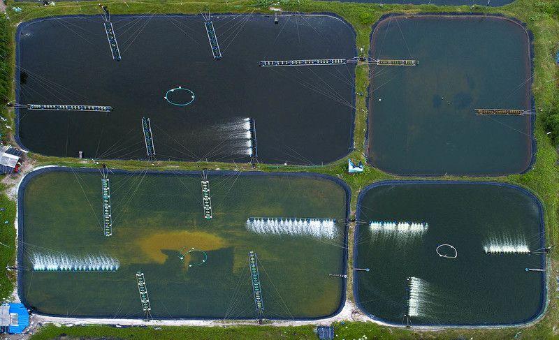 Вьетнам, Ке Га, пруды, ферма, морепродукты, дрон, аэро, aerial Иноземные сооруженияphoto preview