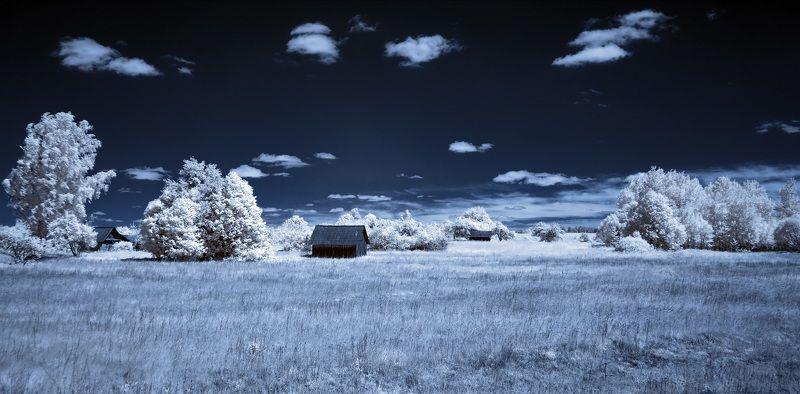 infrared,ик-фото,инфракрасное фото,инфракрасная фотография,пейзаж,природа,беларусь,лето Лето в избушках. Инфракрасная фотография.photo preview