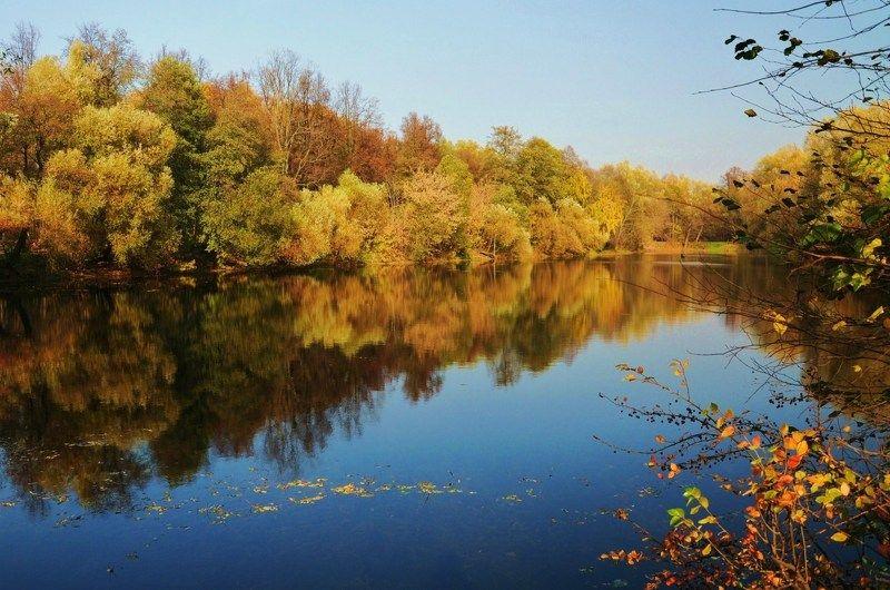 осень пейзаж  парк Уходит осень...photo preview
