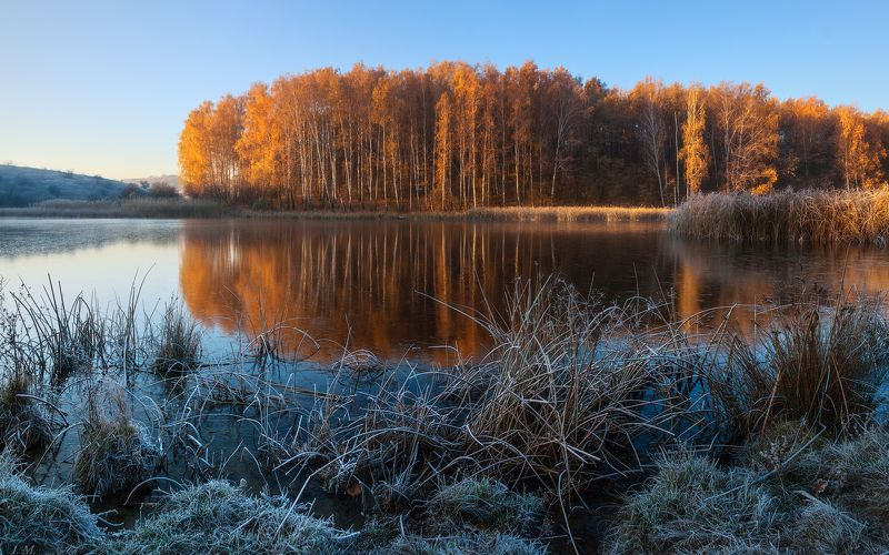autumn, trees, landscape, sunrise, morning, lake, frozen, reflections, water, nature, light, grass, colors, panorama, pond, countryside, frost, outdoors, first, wide angle, осень, рассвет, заморозки, березки, деревья, панорама Autumn colorsphoto preview