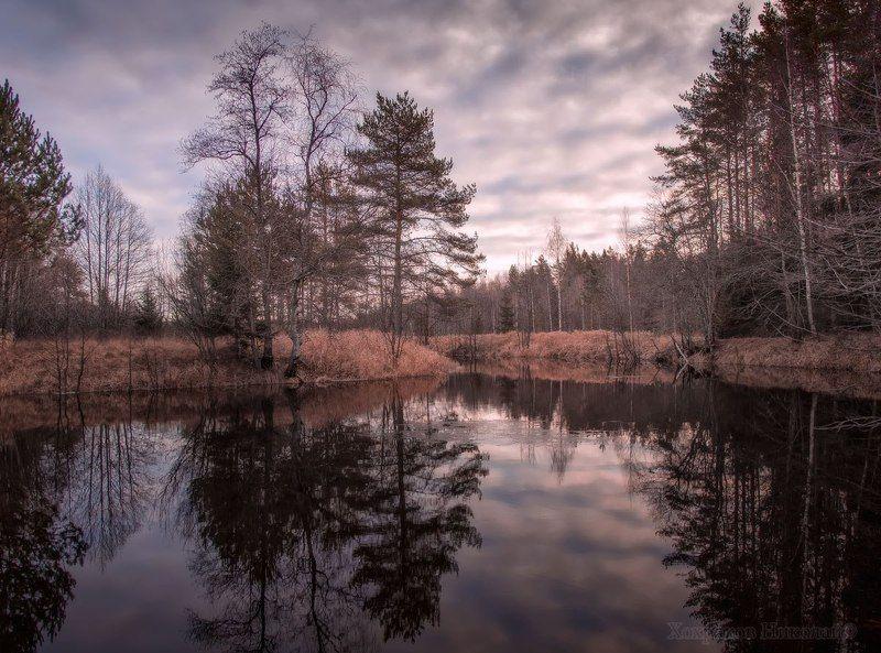 ноябрьское зеркало...photo preview