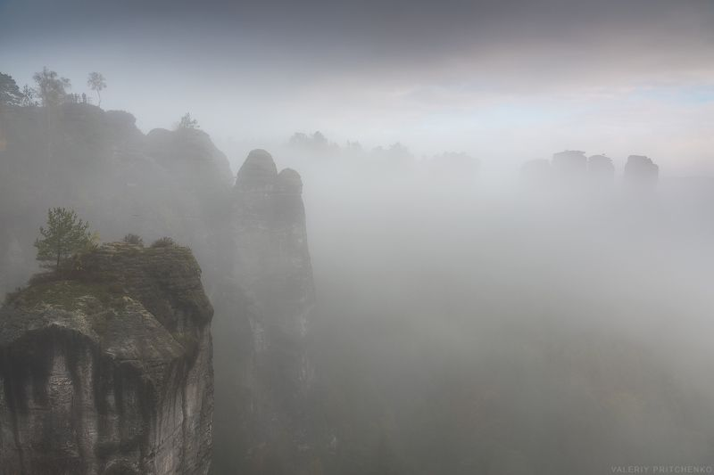 Bastei, Germany, Германия, природа, пейзаж Туманные скалы Бастаяphoto preview