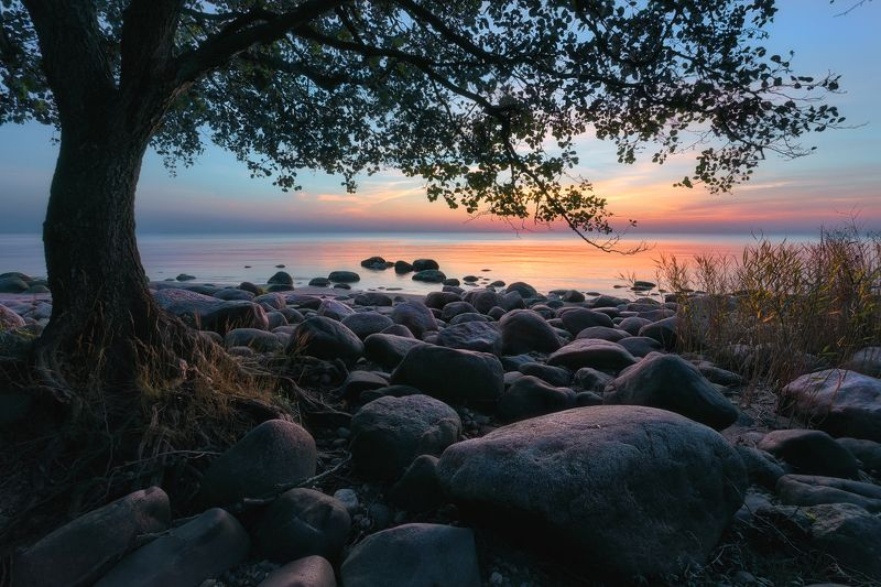 Балтийский закатphoto preview