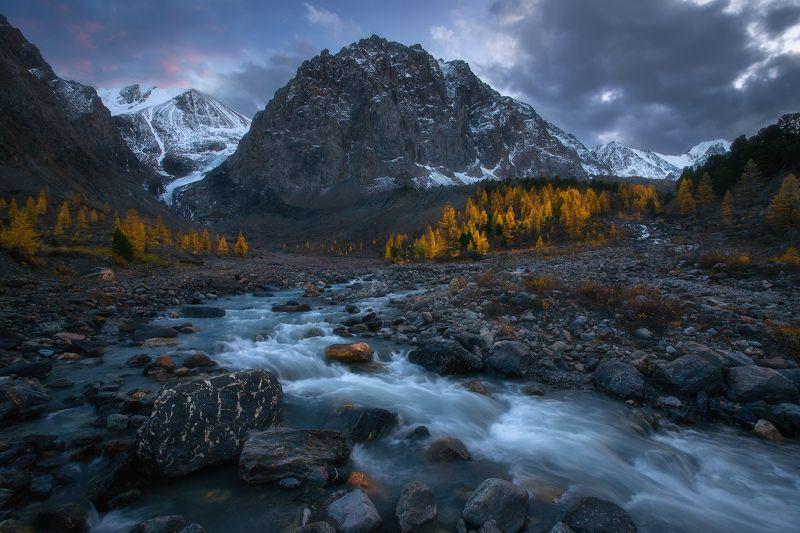 алтай, горы, осень, актру Во владениях рекиphoto preview