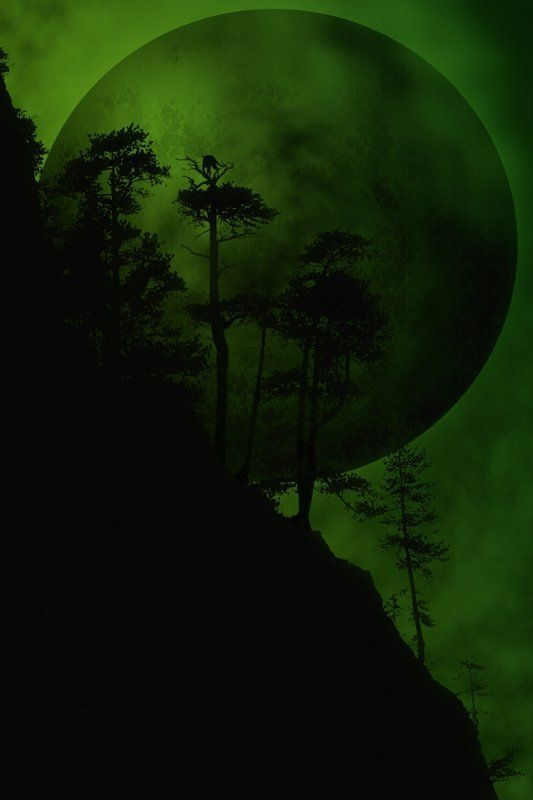 При свете зеленой луныphoto preview