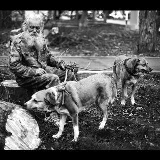 О собаках и Толстом