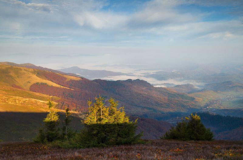 карпаты, боржавский хребет Прикосновение теплаphoto preview