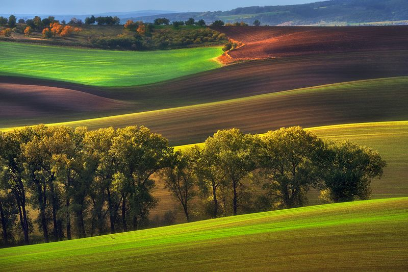 Моравские холмыphoto preview