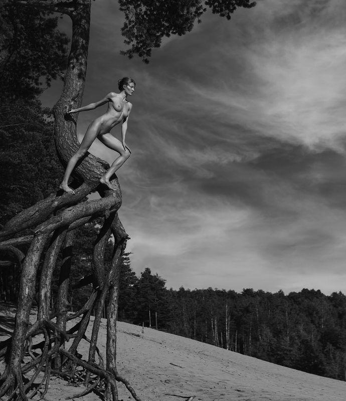 fine, art, nudes Небесные валькирииphoto preview