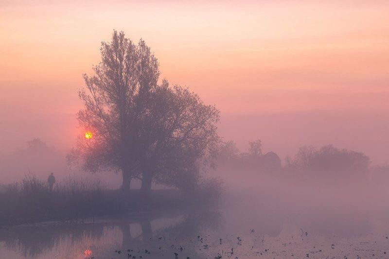 Млечною мягкою кистью манит туманphoto preview