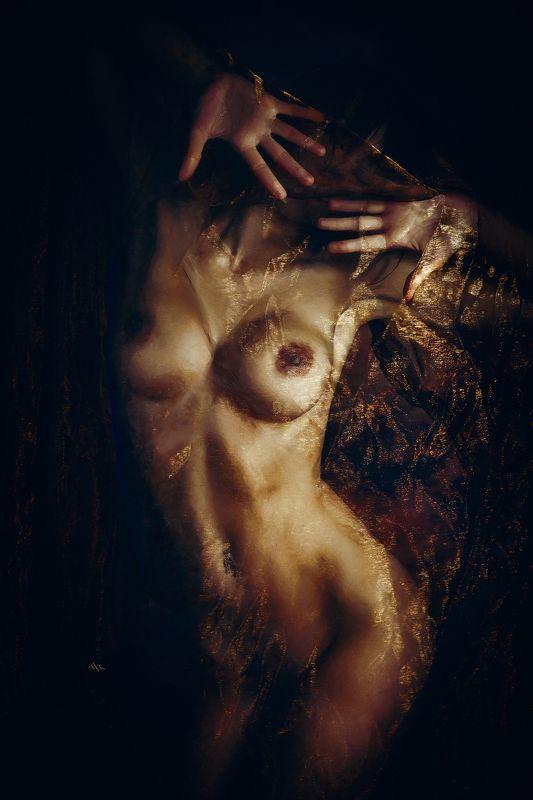 woman, nude, body, studio Golden dreamsphoto preview