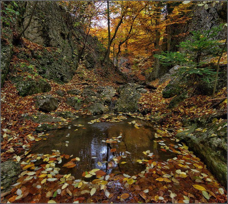 крым, осень, джурла *  *  *photo preview