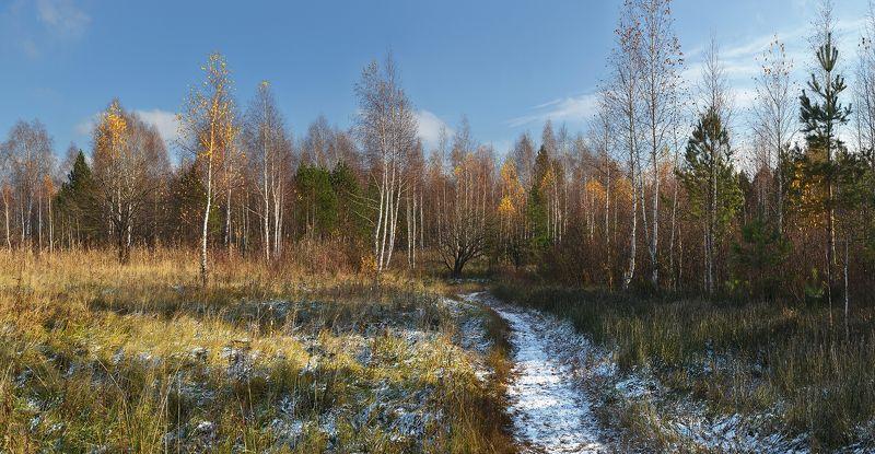 солнечный день, желтые листья, березки, тропинка, снег, осень Октябрьphoto preview