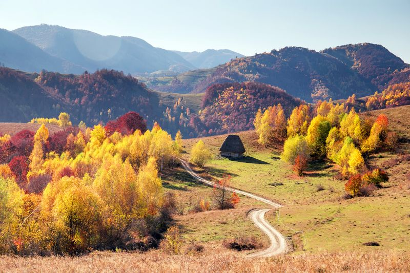 road,autumn,colors,trees,house,fall, The roadphoto preview