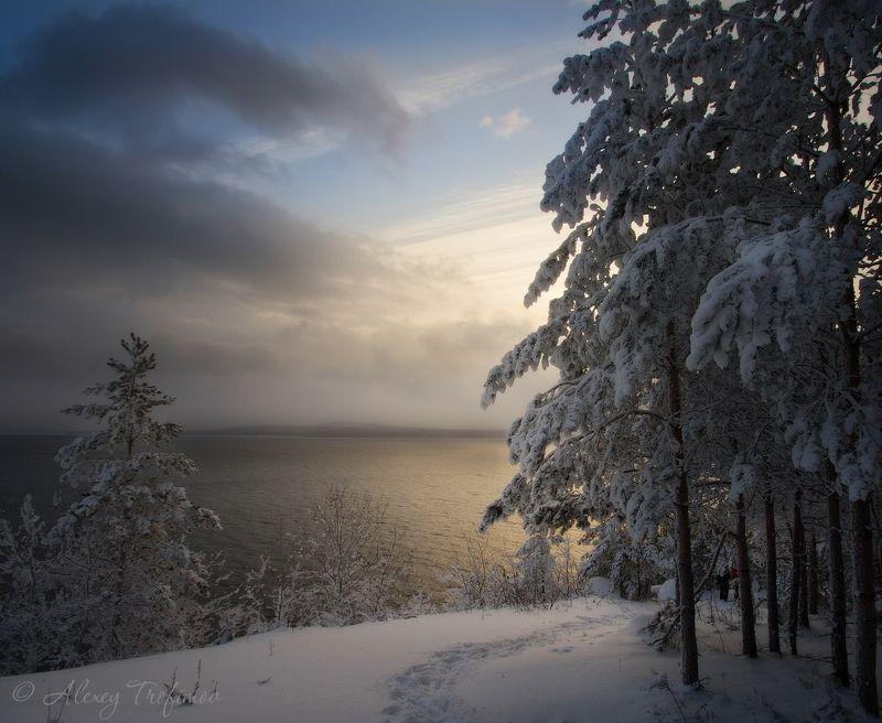 Зимний светphoto preview