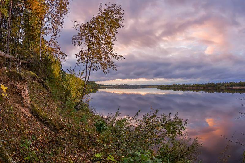 река осень березы вечер тихая песня осени )photo preview