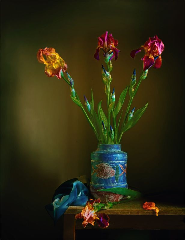 still life, натюрморт,    растение, природа,  цветы, ирисы, ваза, лепесток, натюрморт с ирисамиphoto preview