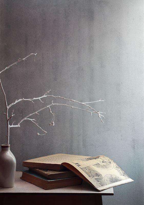 натюрморт, зима, декабрь, белый, книги, ветка, цикламен А за окном декабрь...photo preview