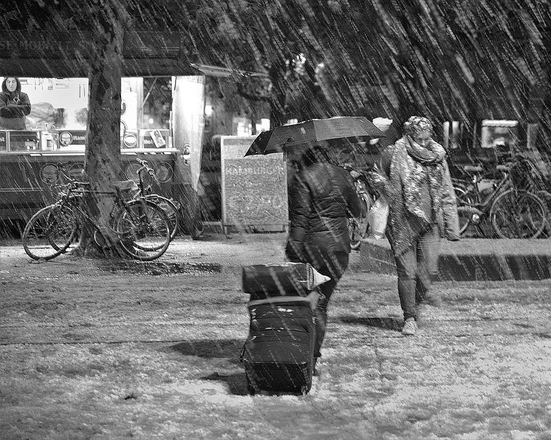 Winter in Belgium.photo preview