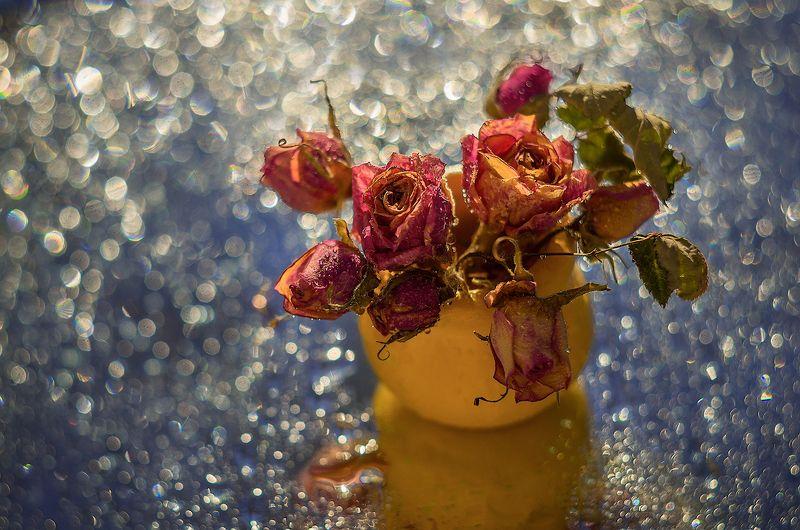 роса зеркало розы кувшин про маленькие розочкиphoto preview