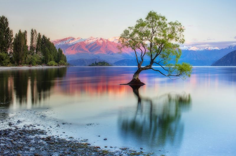 new zealand, south island, wanaka lake Outcastphoto preview