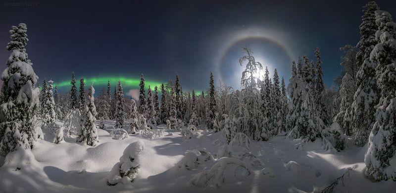 Апатиты,россия,мурманская область,пейзаж,панорама,лес,зима,ночь,гало,луна,звезды photo preview