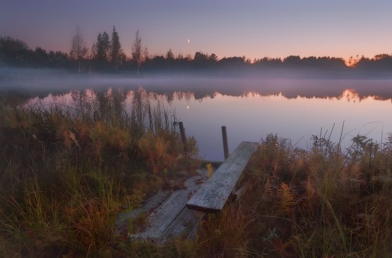 питер, ночь, вечер, закат, болото, озеро, туман К ночи....photo preview