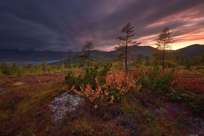 Колымские закатыphoto preview