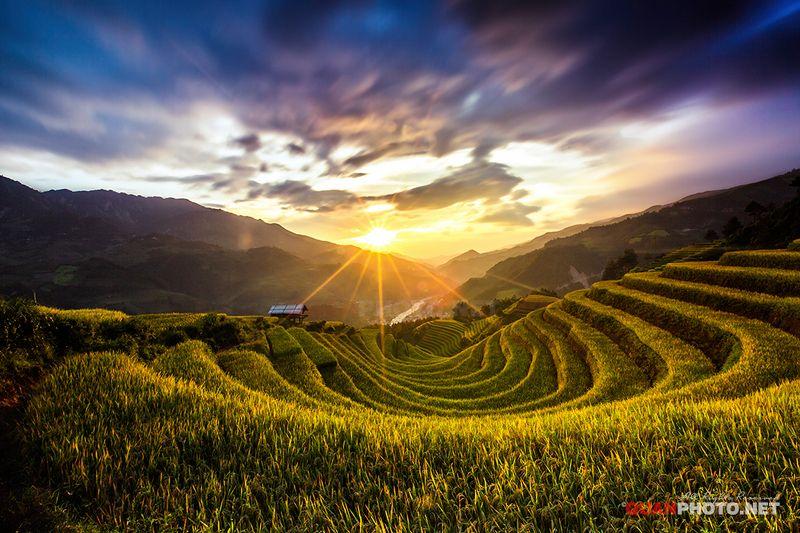 quanphoto, landscape, long_exposure, sunset, sundown, mountains, rice, terrace, farmland, agriculture, valley, mucangchai, vietnam Rice Terrace Sunsetphoto preview