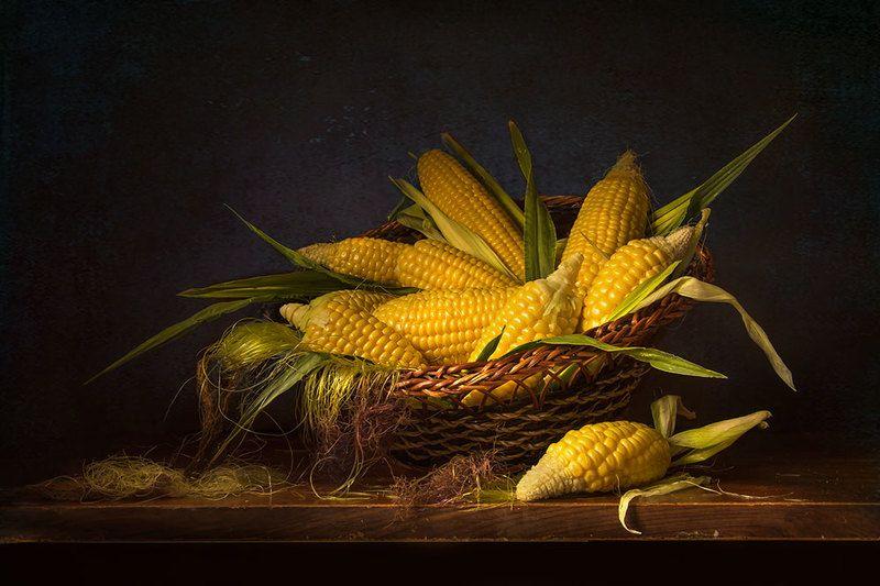 красивый натюрморт с кукурузой,художественное фото,искусство,творчество. Солнечная кукурузка.photo preview