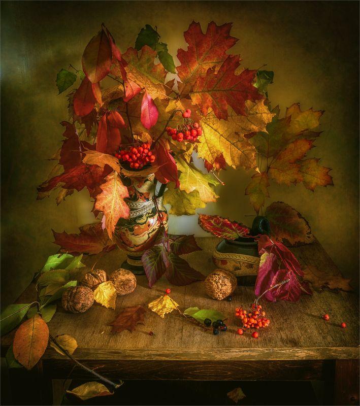 still life, натюрморт,    растение, природа,    осень, листья, осенние листья,  кувшин,  винтаж, ваза, орехи, рябина, ягода, беспорядок, осенний беспорядокphoto preview