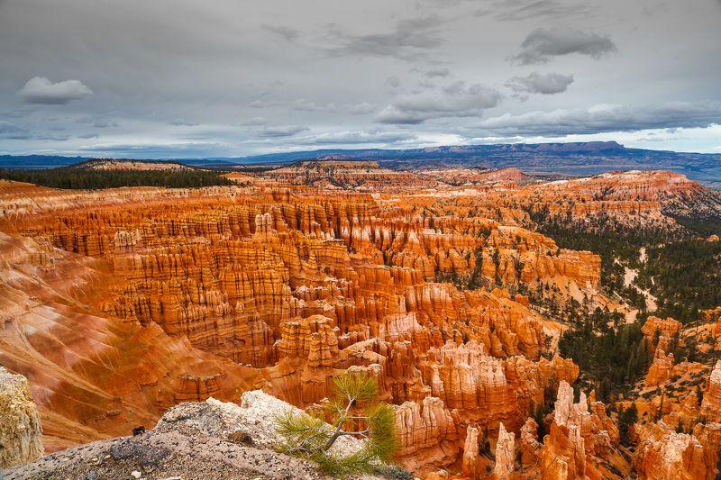 USA 2011 - Utah & Arizona canyonsphoto preview