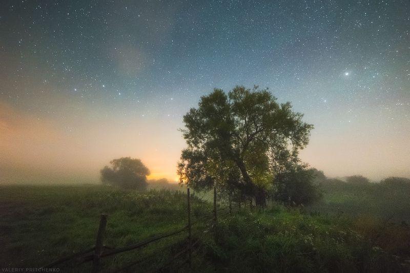 Туманная ночь в конце летаphoto preview