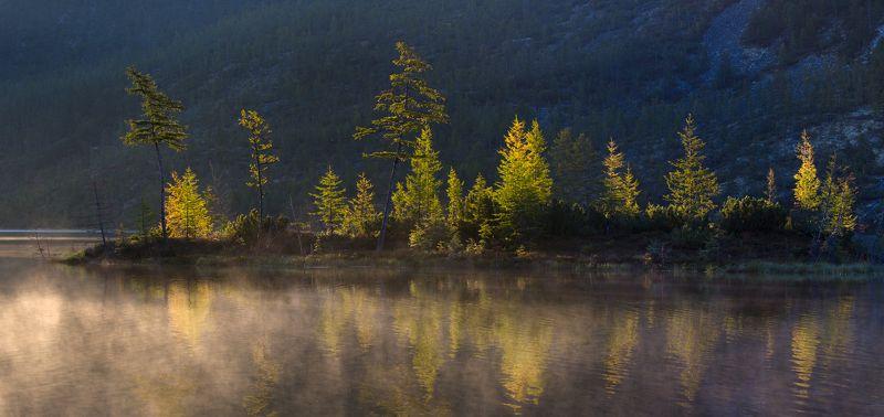 озеро, рассвет, тишина, отражение, осень, остров, деревья, колыма, туман, покой Раннее утро на озере Танцующих Хариусовphoto preview