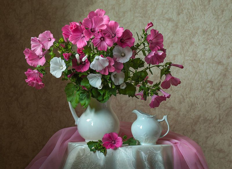 красивый натюрморт с розовыми лаватерами,цветы,художественное фото,искусство,творчество. Букет лаватеры.photo preview