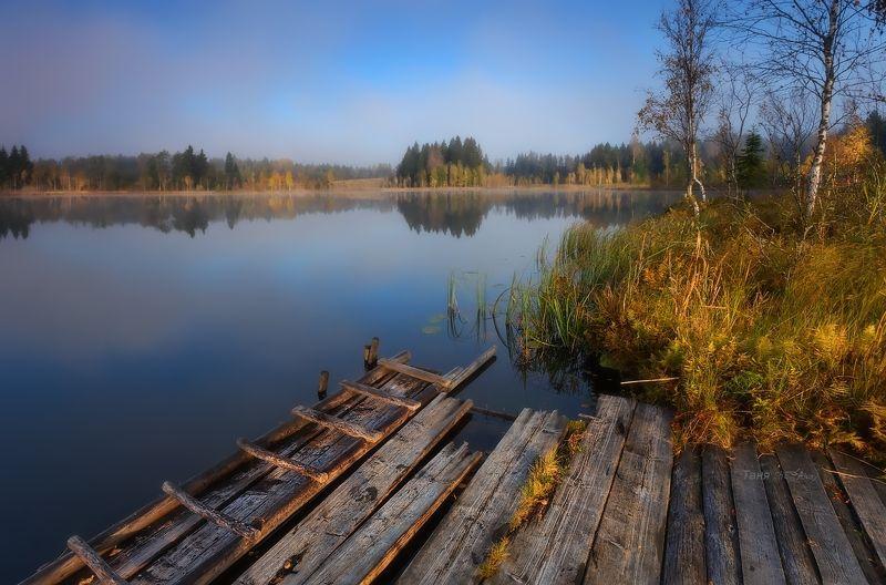 питер, болото, туман, рассвет, утро, осень Растаял утренний туман...photo preview