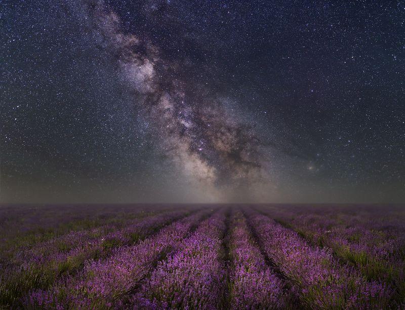 крым,россия,пейзаж,природа,ночь,звезды,млечный путь,лаванда,прованс,панорама,небо,longexposure,длинная выдержка,цветы,путешествие Звездная лавандаphoto preview